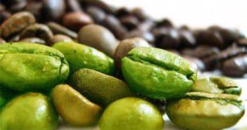 Quels sont les meilleurs bruleurs de graisse naturels ?
