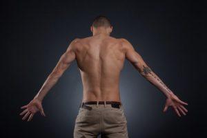 Le pénis est-il un muscle ?