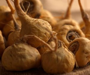 maca consommation