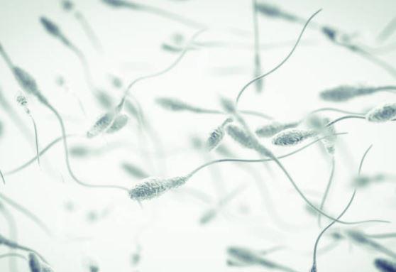 Sperme épais : causes et solutions