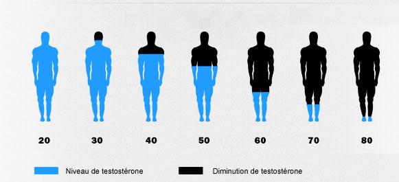 baisse de la testostérone, symptôme de l'andropause