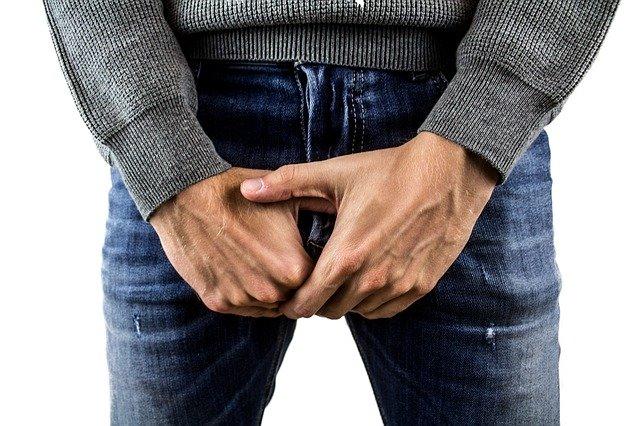 croissance penis mécanisme de l'érection