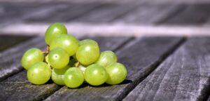 Les pépins de raisin